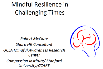 SGH GR: Mindful Resilience in Challenging Times (Online) Banner