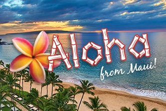 SHC Aloha Primary Care Conference 2021 Banner